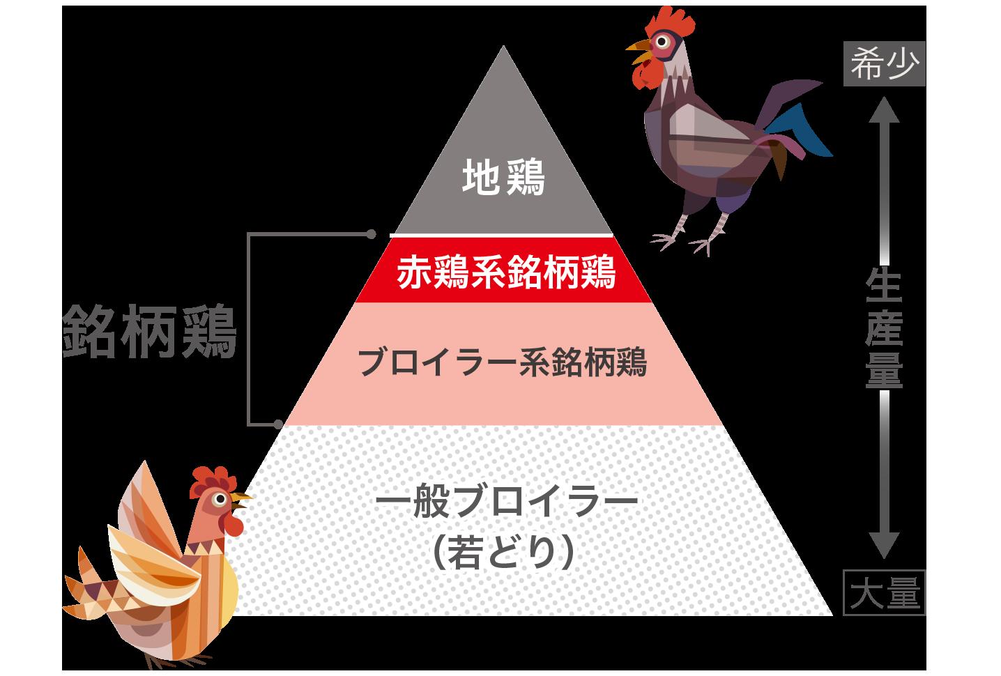 希少な銘柄鶏の階層図